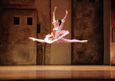 Alabama Ballet - Image 1