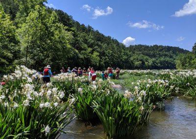 Cahaba River Society - Image 3
